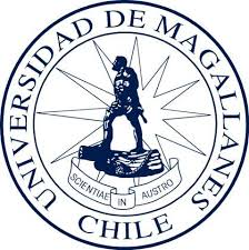 universidad virtual diplomado universidad de magallanes carreras